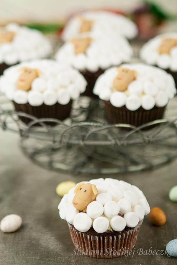 Cupcakes sheep